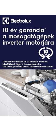 Electrolux Inverter